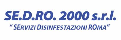 SE.D.RO. 2000 S.R.L.